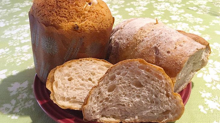 ベーカリーねもとのふわふあパン