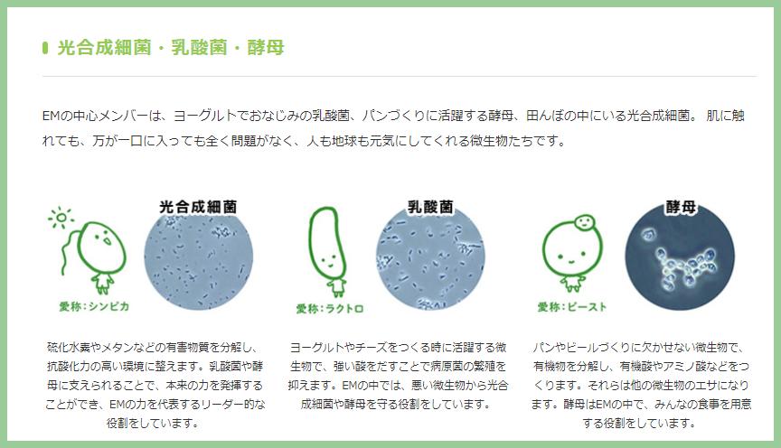 em菌とは、光合成細菌・乳酸菌・酵母