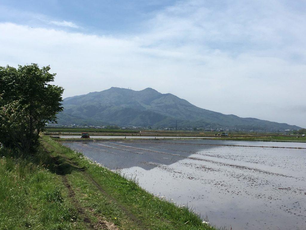 筑波リンリンロード 筑波山
