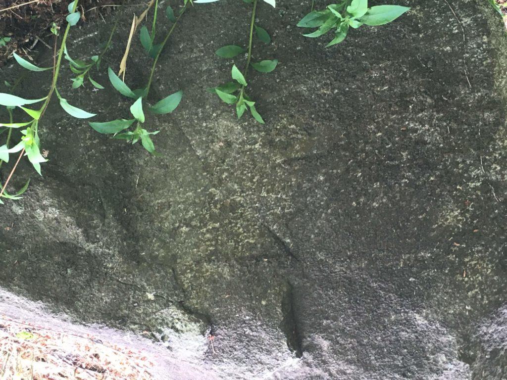 歌姫神社の岩に神代文字?