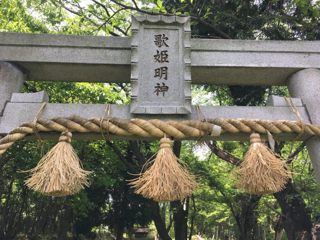 歌姫明神の不思議な木