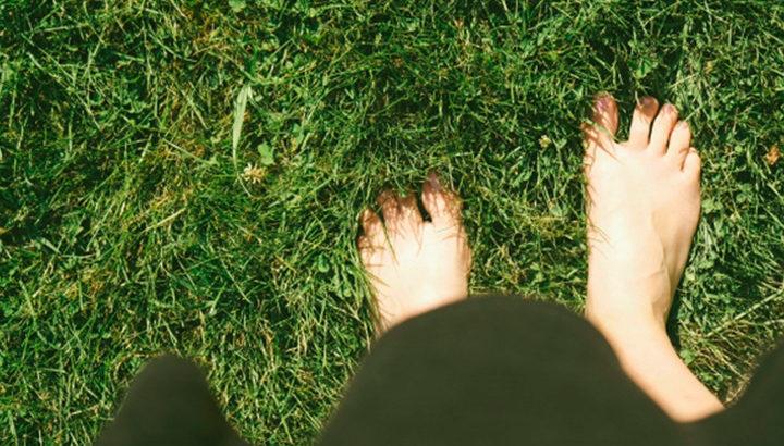 綺麗に刈った芝生の上でグランディング