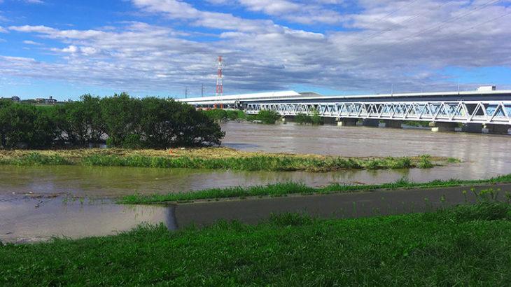江戸川の堤防ありがとう